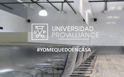 CIERRE DE LA UNIVERSIDAD PROVALLIANCE HASTA EL 24 DE MARZO